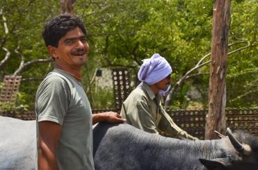 Cow herders.