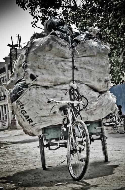 Bikes haul an amazing amount of stuff.