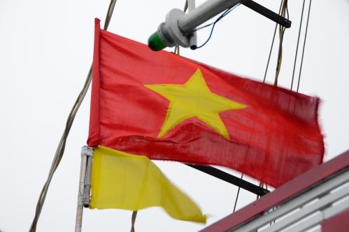 Vietnam's flag