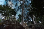 Jungle temple-2